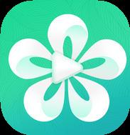24直播网app(免费看球高清无插件)