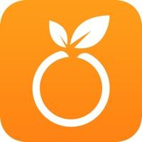 红橙优品手机版